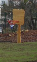 Akátový koš na basketbal