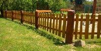 Akátový plot 01