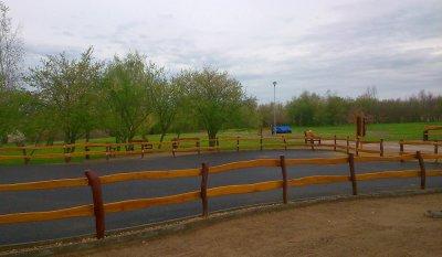 Akátový plot 02